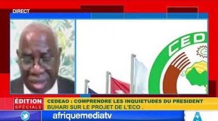 EDITION SPECIALE / CEDEAO: Comprendre les inquiétudes du Président Buhari sur le projet de l'Eco