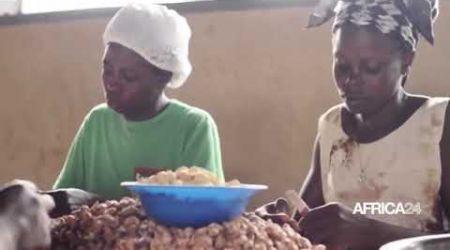 Côte d'Ivoire , Création d'une zone de transformation de noix de cajou