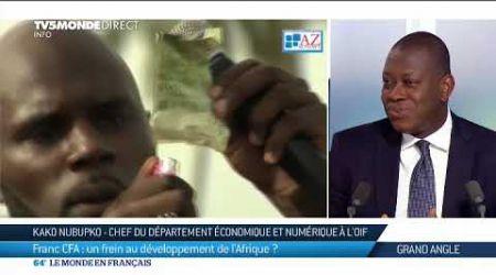Franc CFA : un frein au développement de l'Afrique ?